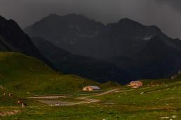 Albulapass, Alpen, Alpenpass, Engadin, Graubünden, Orte, Schweiz, Suisse, Switzerland, pass d'alvra