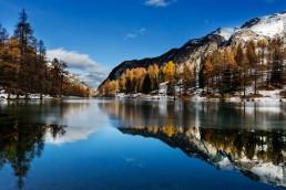 Albulapass, Alpen, Alpenpass, Autumn, Bergsee, Fall, Gewässer, Graubünden, Herbst, Schweiz, See, Suisse, Switzerland, lake, pass d'alvra