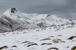 Albulapass, Alpen, Alpenpass, Jahreszeiten, Landschaft und Natur, Natur, Orte, Schweiz, Suisse, Switzerland, Winter, pass d'alvra