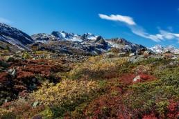 Albulapass, Alpen, Alpenpass, Autumn, Engadin, Fall, Graubünden, Herbst, Jahreszeiten, Landschaft und Natur, Natur, Orte, Schweiz, Suisse, Switzerland, pass d'alvra
