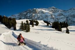 Appenzell, Appenzellerland, Jahreszeiten, Landschaft und Natur, Natur, Orte, Ostschweiz, Schweiz, Suisse, Switzerland, Säntis, Urnäsch, Winter
