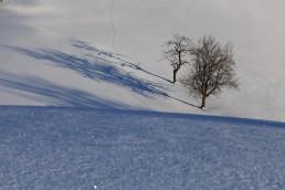 Appenzell, Appenzellerland, Schweiz, Suisse, Switzerland, Winter