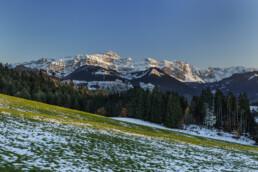 Alpstein, Appenzell, Frühling, Schweiz, Spring, Suisse, Switzerland, Säntis, Urnäsch