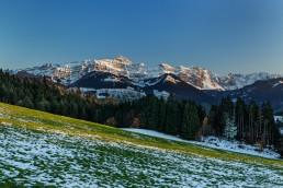 Alpen, Alpstein, Appenzell, Appenzellerland, Frühling, Jahreszeiten, Landschaft und Natur, Natur, Orte, Ostschweiz, Schweiz, Spring, Suisse, Switzerland, Säntis, Urnäsch