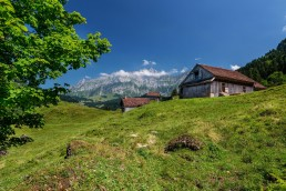Appenzell, Schweiz, Sommer, Suisse, Switzerland, Säntis, Urnäsch, summer