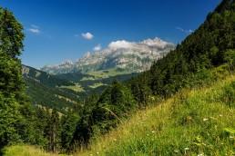 Appenzell, Appenzellerland, Jahreszeiten, Landschaft und Natur, Natur, Orte, Ostschweiz, Schweiz, Sommer, Suisse, Switzerland, Säntis, Urnäsch, summer