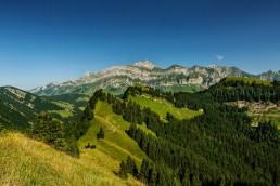 Appenzell, Appenzellerland, Hochalp, Jahreszeiten, Landschaft und Natur, Natur, Orte, Ostschweiz, Schweiz, Sommer, Suisse, Switzerland, Säntis, Urnäsch, summer