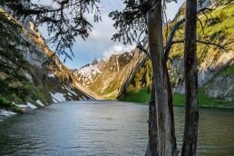 Alpen, Alpstein, Appenzell, Appenzell Innerrhoden, Appenzellerland, Berge, Bergsee, Fählensee, Gewässer, Landschaft und Natur, Orte, Ostschweiz, Schweiz, See, Suisse, Switzerland, lake
