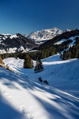 Alp, Alpen, Alps, Alpstein, Appenzell, Appenzellerland, Hochalp, Jahreszeiten, Landschaft und Natur, Natur, Orte, Ostschweiz, Schweiz, Suisse, Switzerland, Säntis, Urnäsch, Winter