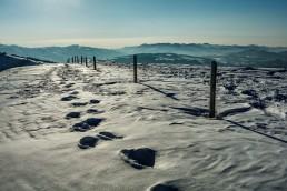 Appenzell, Appenzellerland, Hochalp, Jahreszeiten, Landschaft und Natur, Natur, Orte, Ostschweiz, Schweiz, Suisse, Switzerland, Winter