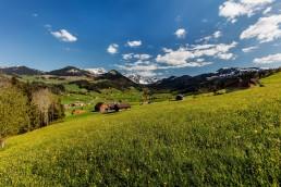 Appenzell, Frühling, Schweiz, Spring, Suisse, Switzerland, Urnäsch