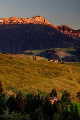Appenzell, Appenzellerland, Hundwil, Jahreszeiten, Landschaft und Natur, Natur, Orte, Ostschweiz, Schweiz, Sommer, Suisse, Switzerland, Säntis, summer