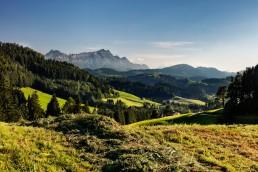 Appenzell, Appenzellerland, Jahreszeiten, Landschaft und Natur, Natur, Orte, Ostschweiz, Schweiz, Sommer, Suisse, Switzerland, Säntis, Trogen, summer