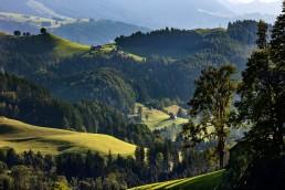 Appenzell, Appenzellerland, Jahreszeiten, Landschaft und Natur, Natur, Orte, Ostschweiz, Schweiz, Sommer, Suisse, Switzerland, summer