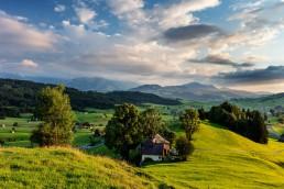 Appenzell, Appenzellerland, Gais, Jahreszeiten, Landschaft und Natur, Natur, Orte, Ostschweiz, Schweiz, Sommer, Suisse, Switzerland, summer