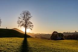 Appenzell, Appenzellerland, Autumn, Fall, Herbst, Jahreszeiten, Landschaft und Natur, Natur, Orte, Ostschweiz, Schweiz, Suisse, Switzerland, Waldstatt