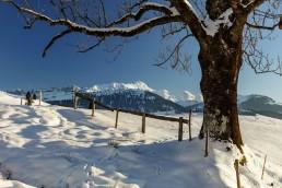 Appenzell, Appenzellerland, Schweiz, Suisse, Switzerland, Säntis, Winter