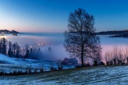 Appenzell, Appenzellerland, Jahreszeiten, Landschaft und Natur, Natur, Orte, Ostschweiz, Schweiz, Suisse, Switzerland, Trogen, Winter