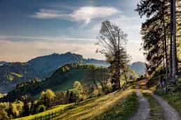 Appenzell, Appenzellerland, Frühling, Hundwil, Jahreszeiten, Landschaft und Natur, Natur, Orte, Ostschweiz, Schweiz, Spring, Suisse, Switzerland