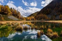 Alpen, Alpenpass, Autumn, Bernina, Berninapss, Engadin, Fall, Gewässer, Graubünden, Herbst, Passo del Bernina, Schweiz, See, Suisse, Switzerland