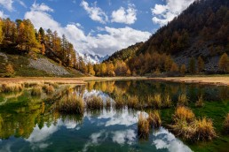 Alpen, Alpenpass, Autumn, Bernina, Berninapss, Engadin, Fall, Gewässer, Graubünden, Herbst, Jahreszeiten, Landschaft und Natur, Natur, Orte, Passo del Bernina, Schweiz, See, Suisse, Switzerland