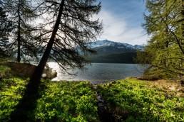 Alpen, Alpenpass, Bergsee, Engadin, Gewässer, Graubünden, Landschaft und Natur, Maloja, Maloja-Pass, Malojapass, Orte, Schweiz, See, Suisse, Switzerland, lake