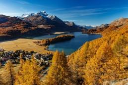 Alpen, Alpenpass, Autumn, Bergsee, Engadin, Fall, Gewässer, Graubünden, Herbst, Maloja, Maloja-Pass, Malojapass, Schweiz, See, Suisse, Switzerland