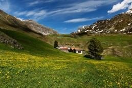 Alpen, Alpenpass, Graubünden, Jahreszeiten, Landschaft und Natur, Natur, Orte, Schweiz, Sommer, Suisse, Switzerland, summer