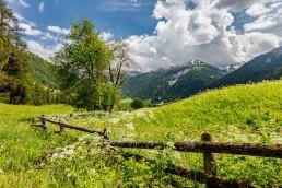 Alpen, Alpenpass, Graubünden, Jahreszeiten, Landschaft und Natur, Natur, Ofenpass, Orte, Schweiz, Sommer, Suisse, Switzerland, summer