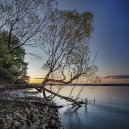 Abend, Baum, Bodensee, Fotografie, Gewässer, Landschaftsfotografie, Natur, Photography, Schweiz, See, Suisse, Switzerland, Thurgau, lake, landscape photography
