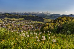 Appenzell Ausserrohden, Appenzeller Vorderland, Appenzellerland, Frühling, Heiden, Landscape, Landschaft, Ostschweiz, Schweiz, Spring, Suisse, Switzerland, Säntis, Teufen