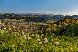 Appenzell Ausserrohden, Appenzellerland, Frühling, Jahreszeiten, Landscape, Landschaft, Landschaft und Natur, Natur, Orte, Ostschweiz, Schweiz, Spring, Suisse, Switzerland, Säntis, Teufen
