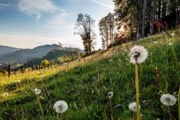 Appenzell, Ostschweiz, Switzerland