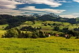 Alpstein, Appenzell Ausserrohden, Berge, Hügel, Landscape, Landschaft, Ostschweiz, Schweiz, Suisse, Switzerland, Säntis, Wald, Wald AR