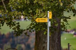 Appenzell Ausserrohden, Ostschweiz, Schweiz, Stein, Suisse, Switzerland, Tourismus, Verkehr, Wanderweg, Weg