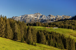 Alp, Appenzell, Autumn, Berg, Fall, Herbst, Hügel, Ostschweiz, Schweiz, Suisse, Switzerland, Säntis, Urnäsch