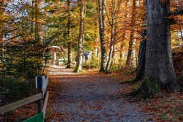 Appenzeller Land Tourismus AR, Appenzeller Vorderland, Heiden, Landscape, Landschaft, Ostschweiz, Tourismus, Verkehr, Wanderweg, Weg