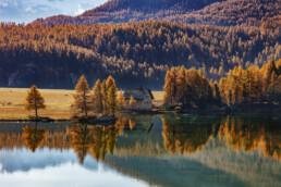 Engadin, Graubünden, Ostschweiz, Schweiz, Suisse, Switzerland