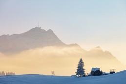 Appenzell, Appenzell Ausserrohden, Appenzellerland, Schnee, Schweiz, Speicher, Suisse, Switzerland, Säntis, Wetter, Winter