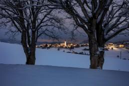 Appenzell Ausserrohden, Baum, Bäume, Ostschweiz, Schweiz, Schwellbrunn, Suisse, Switzerland, Tree, Trees, Wald, Winter