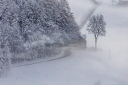 Appenzell, Appenzell Ausserrohden, Appenzellerland, Bauernhof, Baum, Fotografie, Landschaftsfotografie, Morgen, Nebel, Nebelmeer, Ortsbild, Ostschweiz, Outdoor, Photography, Schwellbrunn, Streusiedlung, Waldstatt, Wetter, Winter, landscape photography