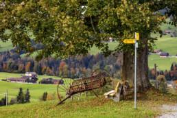Appenzell, Appenzell Ausserrohden, Autumn, Fall, Herbst, Ostschweiz, Schweiz, Stein, Suisse, Switzerland, Tourismus, Verkehr, Wanderweg, Weg