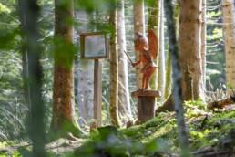 Märliweg in Urnäsch, Themenwanderweg, Urnaesch, Urnäsch, Verkehr, Wald, Wanderweg, Weg