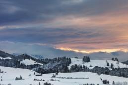 Abend, Appenzell, Appenzell Ausserrohden, Schnee, Schweiz, Suisse, Switzerland, Trogen, Wald, Wald AR, Wetter, Winter