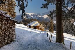 Appenzell, Appenzell Ausserrohden, Ostschweiz, Schnee, Schweiz, Suisse, Switzerland, Urnäsch, Wetter, Winter