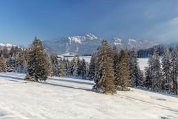 Appenzell, Appenzell Ausserrohden, Appenzellerland, Ostschweiz, Schnee, Schweiz, Suisse, Switzerland, Säntis, Urnäsch, Wetter, Winter