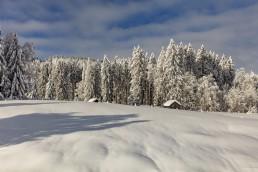 Appenzell, Appenzell Ausserrohden, Appenzellerland, Ostschweiz, Schnee, Schweiz, Suisse, Switzerland, Urnäsch, Wetter, Winter