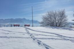 Appenzell Ausserrohden, Aussicht, Berge, Frost, Waldstatt, Winter