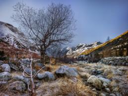 Alpen, Alps, Autumn, Bach, Engadin, Fall, Fluss, Gewässer, Gipfel, Gletscher, Graubünden, Herbst, Schweiz, Suisse, Switzerland