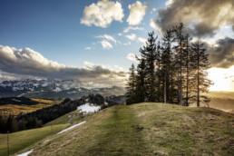 Abend, Appenzell, Appenzell Ausserrohden, Bäume, Clouds, Frühling, Gais, Ostschweiz, Schweiz, Spring, Suisse, Switzerland, Säntis, Tree, Trees, Verkehr, Wald, Wanderweg, Weg, Wolken